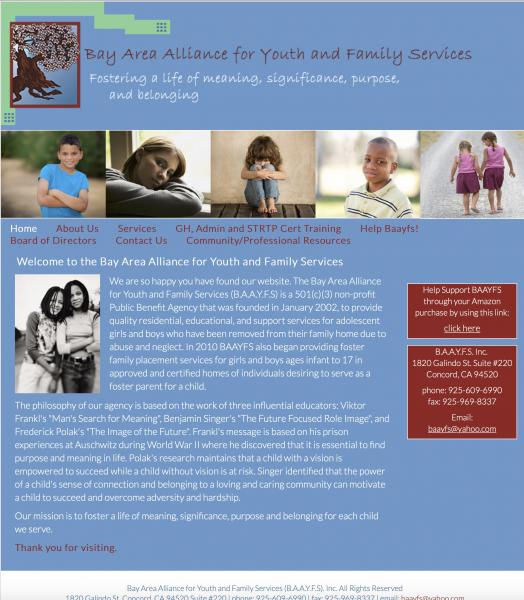 Bay Area Alliance for Youth and Family Services Website image  and link