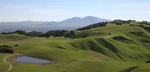 Spring View - Briones to Diablo - 2009